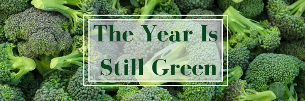 The Year is Still Green